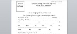 To khai xin nhap quoc tich Viet Nam - Anh minh hoa