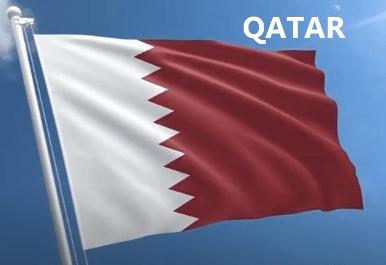 Dai sư quan Qatar tai Ha Noi - Anh minh hoa