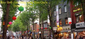 Bao lanh con rieng sang Han Quoc sinh song - Anh minh hoa